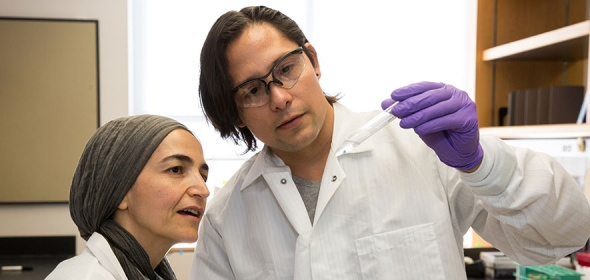 Medical lab technicians examine a health test
